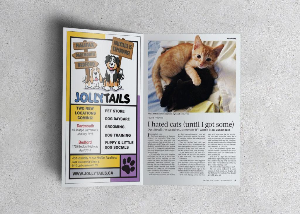 Pets-Cats-1024x731